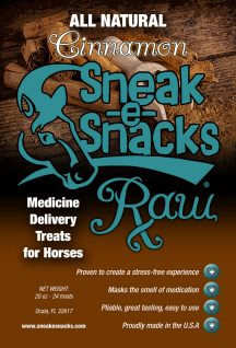 Sneak-e-Snacks RAW Cinnamon