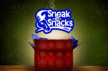 Sneak-e-Snacks Gift Box